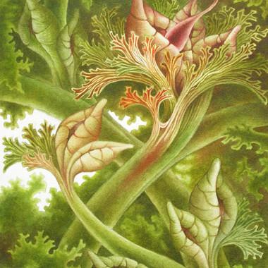 """""""August 2006"""" Watercolor 40 x 50 cm"""